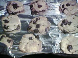 [chocolate chip cookies]